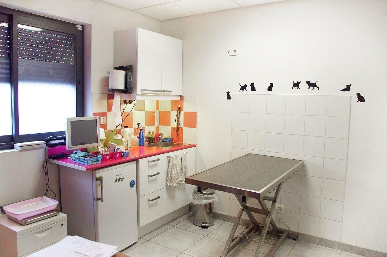 Salles de consultation - Clinique Vétérinaire Saint Roch